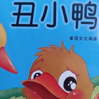 第三十八天 丑小鸭