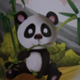 宝贝听我说:23.熊猫的一天