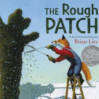 2020.02.10-The Rough Patch