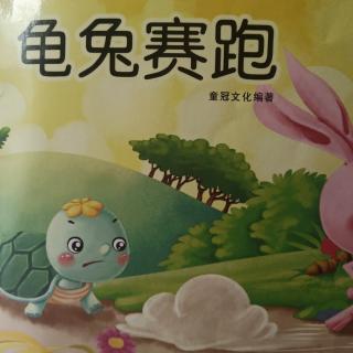 第四十五次  龟兔赛跑