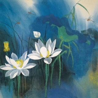 荷花——叶圣陶