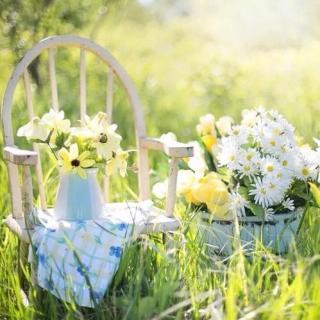 三毛 | 人生的尽头,也可以再有春天
