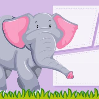 大象的耳朵 - 柒染👐