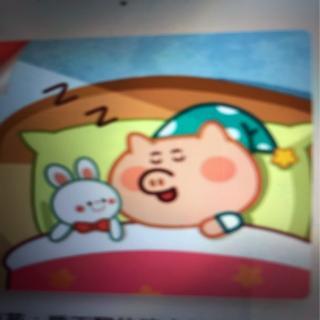 [安全警长拉布拉多]千万不要乱吃药:睡不醒的猪小弟