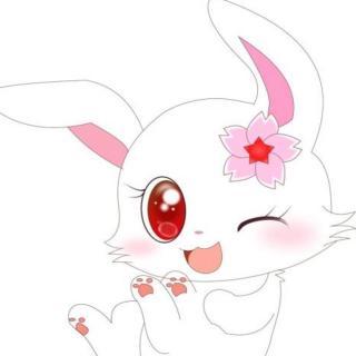【领航卓越故事】园长妈妈睡前故事503《小白兔买面包🍞》