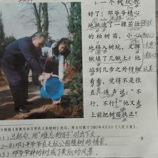 4.邓小平爷爷植树
