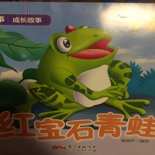 红宝石青蛙🐸