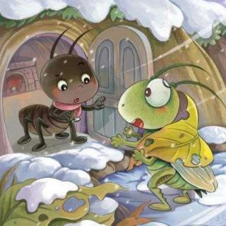 欢欢老师讲故事【蟋蟀和蚂蚁】