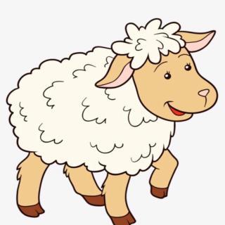 聪明的小绵羊🐑