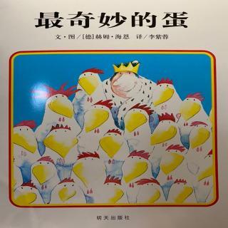 3⃣️0⃣️《最奇妙的蛋》🥚