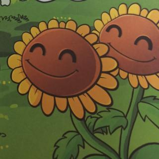 我要变成双胞向日葵