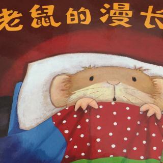 小老鼠的漫长一夜