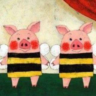 爱吃糖的小猪🐷