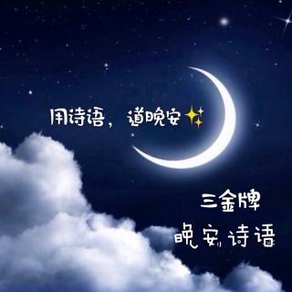 明月松间照,清泉石上流。