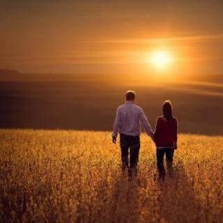《爱是人类最大的课题》— 蒋勋