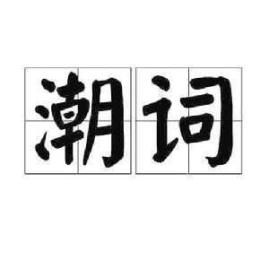 越南语流行语02