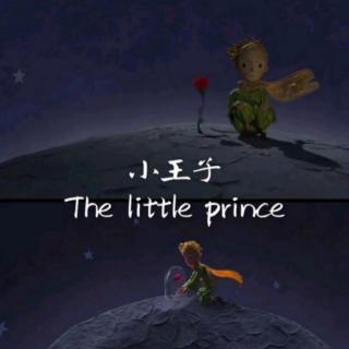睡前故事‖小王子的玫瑰开了-8