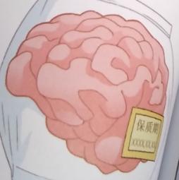 植物大战僵尸2人体漫画1超强大脑大对决16记忆的保质期有多长?