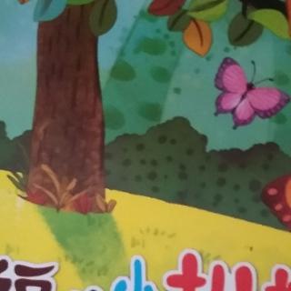 幸福的小枞树.二