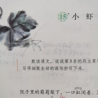 李梦老师 朗读三下15.《小虾》🦐