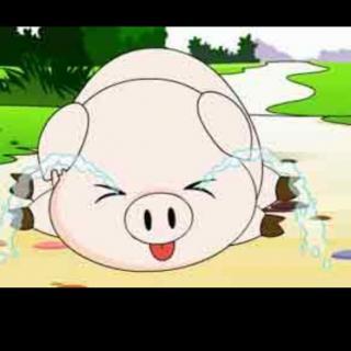 🐷小猪学本领
