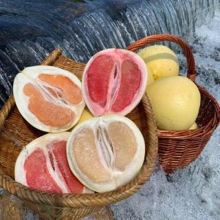 人生就像一个柚子