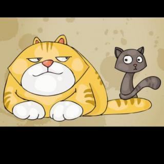 猫咪和七只小白鼠