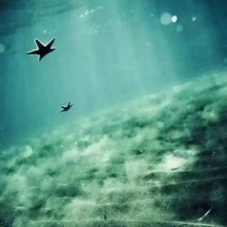 治愈系音乐1:大海的咏叹1