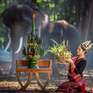 泰挝音乐5
