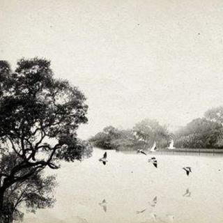余秋雨:人生只有到了老年,诗意才会出现