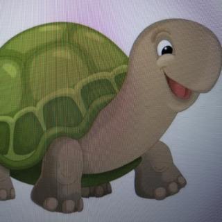 睡前故事—《聪明的乌龟》