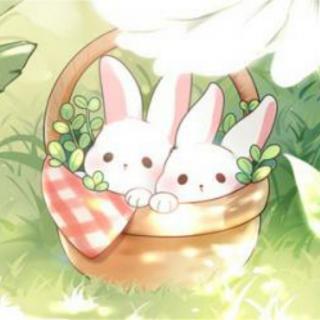 示范区第二幼儿园小戚姐姐讲故事❤:《两只小兔子》