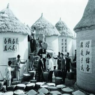 历史杂糅_珍宝岛到铁列克提!战争的前夜,中美建交的契机