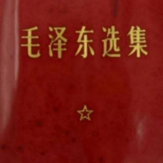 《毛选》08. 抗日游击战争的战略问题