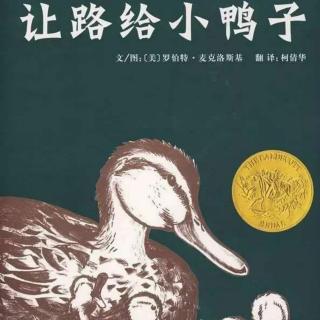园长妈妈晚安故事《让路给小鸭子》