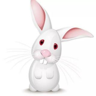 晚安故事《真假小白兔》