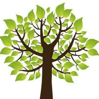 骄傲的小树——苑苑老师爱❤️的小故事