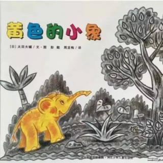 小周老师讲故事《黄色的小象》