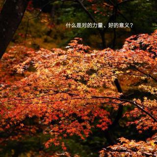 古诗词的不老传说18《游山西村》陆游