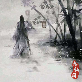 雅致茶音 中国民乐 菩提独版