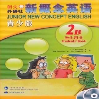 新概念青少版2B unit29 句型