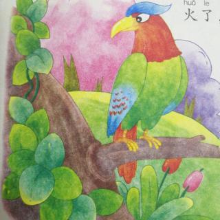 学府教育集团故事第227期《鹦鹉救火》