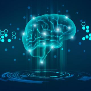 最强大脑脑力训练37、如何记忆长篇文章和书籍资料