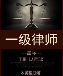 《一级律师》实习生2