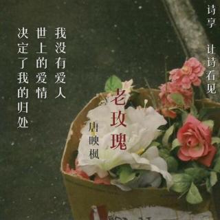 唐映枫「老玫瑰」|朗读者:非文