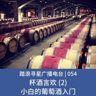 054 - 杯酒言欢 (2) 小白的葡萄酒入门