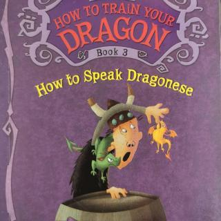 3_How To Speak Dragonese_39