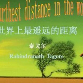 世界上最遥远的距离  泰戈尔