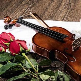 给那些我爱的人-朗诵:闪桂琴 作者:伊思洛.帕斯科.理查德森