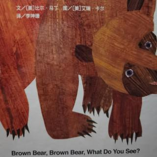 Brown bear brown bear-慢读